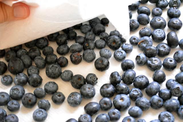 Dry Blueberries