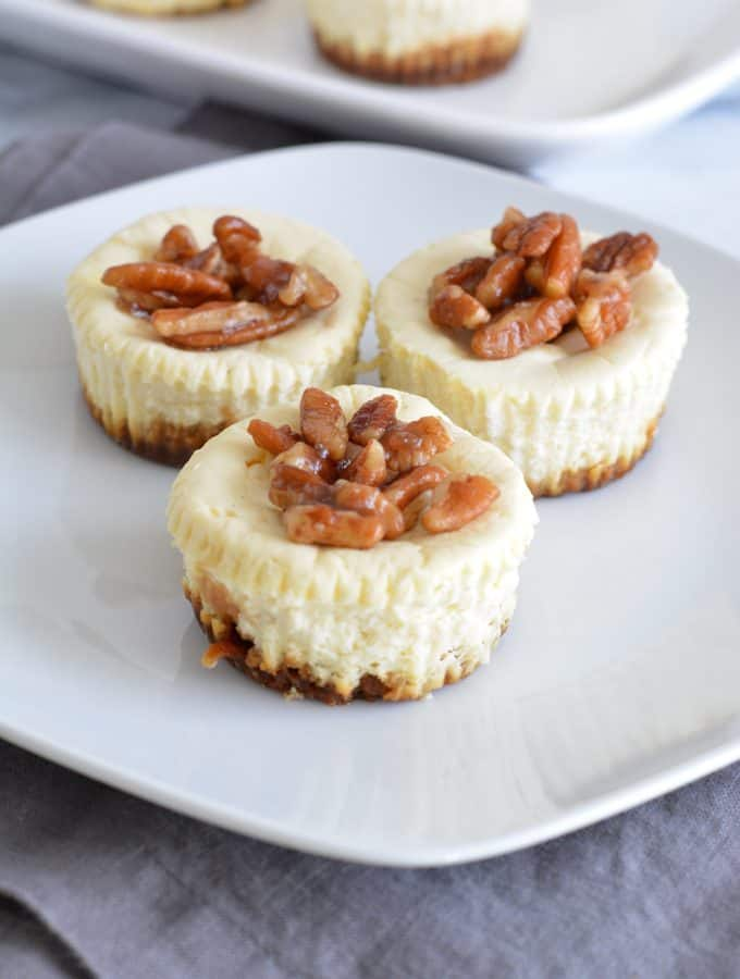 Mini Lower Sugar Cheesecakes
