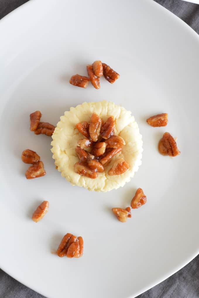 Mini Lower Sugar Cheesecakes are topped with candied pecans and complete with a gingersnap crust. Made with low sugar yogurt and stevia. Perfect for your holiday dessert.