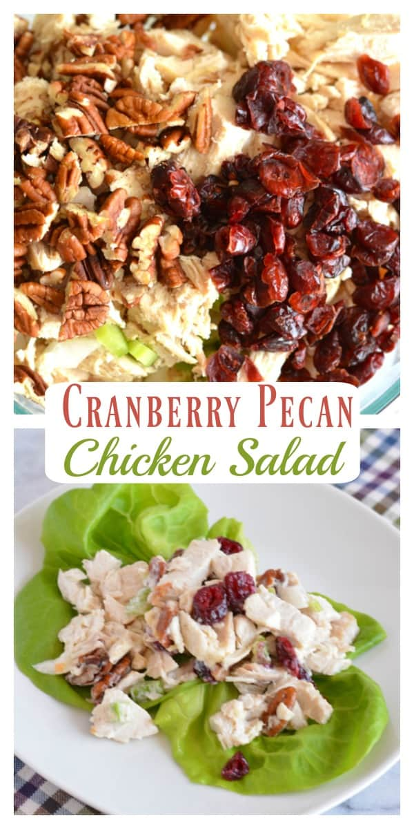 Homemade cranberry pecan chicken salad is a perfect holiday lunch that's not only festive but rich in protein.  This chicken salad can be made with Greek yogurt to lower the fat content. #chickensalad #lunch #holiday #fall #thanksgivin #christmas